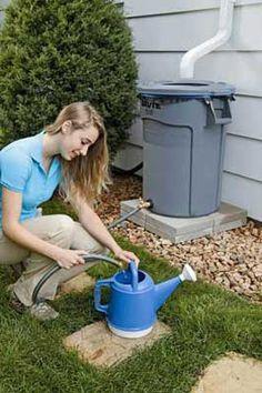 Homemade Rain Barrel craft, barrels, green, rain barrel, homemad rain, backyard, garden, harvesting rain water, diy rain