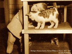 On this Day in History, April 10, 1866: The American Society for the Prevention of Cruelty to Animals (ASPCA) was founded. This young fellow gets as close as he can to decide which kitten to adopt.