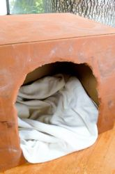 Create a Hibernating Bear Den