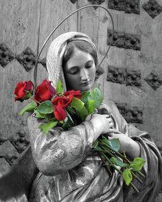ave maria, anthoni mari, mother mari, bless virgin, red roses, bless mother, virgin mary, cathol, virgin mari