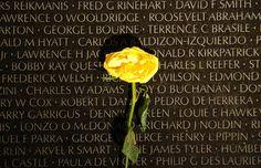 Vietnam War Memorial   Photo by Polytropos.jpg