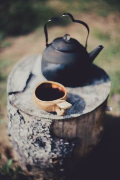 Tea is beautiful in the most humble of settings.