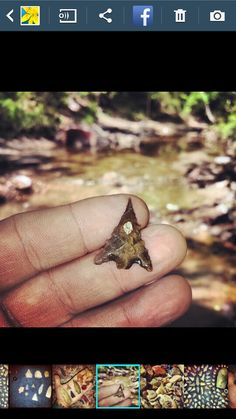 East Texas creek hunting.