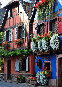 color, cobalt blue, hanging flowers, france, hous, place, garden, flower boxes, window boxes