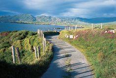Beara Peninsula, County Cork