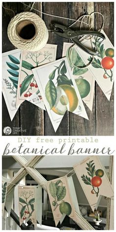 Free Printable Vintage Botanical Banner | Decorating with botanicals is easy with this DIY banner. Or frame them! Click on the photo for your free download. TodaysCreativeLife.com