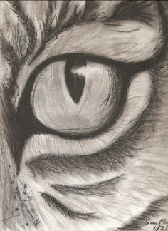 Eye of the Tiger. Charcoal drawing...I'm trying to do a charcoal piece too, messy fun!