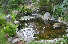 fountains and ponds, idea, water gardens, water features, garden tips, front yards, water clear, outdoor ponds, backyard pond fountain