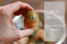 Frozen Turkey Dinner Natural Dog Treats Recipe | 17 Apart: Frozen Turkey Dinner Natural Dog Treats Recipe
