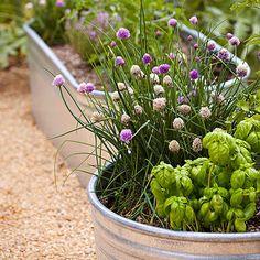 Water Barrel Garden Planters