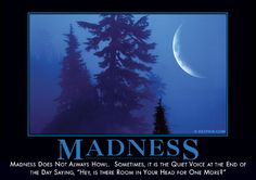 Madness does not alw