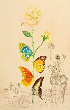 "Flordali ~ Flora Dalinae: ""Rosa Papilio"" (1967) by Salvador Dalí"