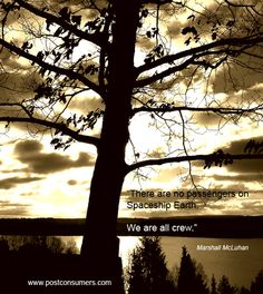 We are all crew on s