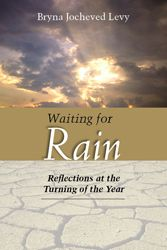 Waiting for Rain is an elegantly written guide to the liturgical themes for the High Holy Days.