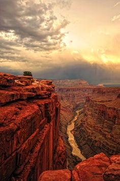the grand canyon...