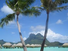 Tahiti ~ I hope to go someday