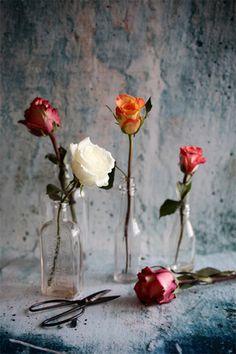 Homemade Rosewater by Caitlin Van Horn