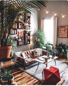 Floors, plants and comfy couch!