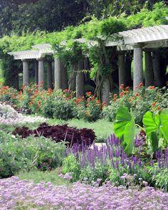 Italian garden | jardin potager