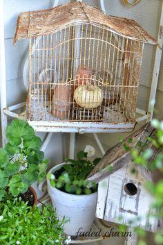 doors, birdhouses, charms, bird cage, bird feeders