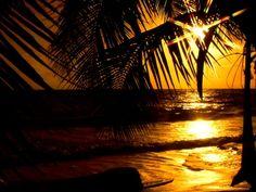 wish i was here!