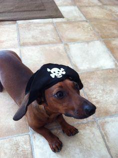 Sometimes Ella is a pirate!  Argh!