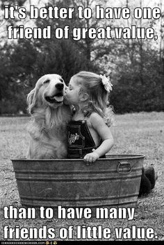 It's not the number of friends someone has, it's how special those friends are that matters :)