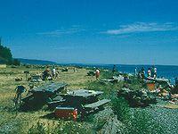 Travel Washington with your Ridgeback -  Camano Island State Park = Washington