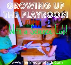 Changing a playroom into a science lab!