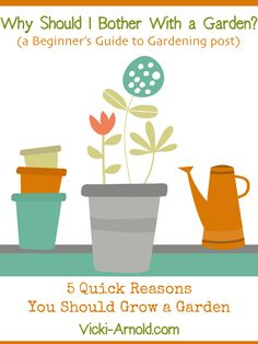 Why Should I Bother With a Garden? - 5 Quick Reasons