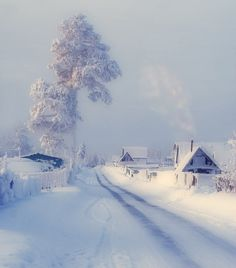 Winter snow...