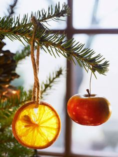 These eco-friendly Christmas tree ornaments are made from seasonal fruits and can be tossed in the compost pile after the holidays. #christmas #holiday #crafts
