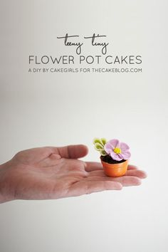 7 simple steps for this no-bake mini cake!  |  Teeny Tiny Flower Pot Cakes | Tutorial by Cakegirls for TheCakeBlog.com