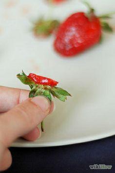 Strawberry seeds ~ Semillas de frutilla
