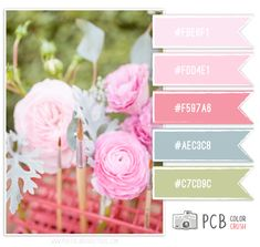 Peony Floral Color Combo