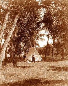 algonquians indians tribes | Cheyenne Indian Tribe