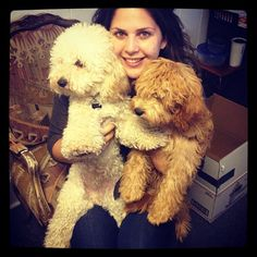 Both the pups are with me today while I work! Bring your pets to work day!