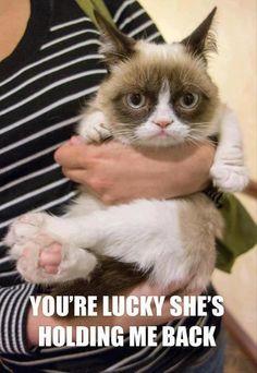 Grumpy's especially mean on Mondays.