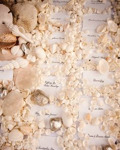 A seashell-embellished escort card display