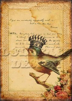 Bird Queen No. 22 - Victorian Antique Lace Handwritten Letter Collage - Printable Digital Download - Vintage Ephemera - Gift Tag - Art Print. $4.99, via Etsy.