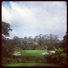 Par 3 #14 at Titirangi Golf Club