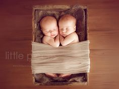interview with newborn photographer Kelly Brown