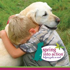 Show you care, spring into action! Only a few days left to enter or vote for your pet rescue heroes. 5 minutes of your time could mean $1,000 cash, plus $4,000 worth of our healthy food for your heroes! Enter by visiting our SIA tab or by clicking here: http://on.fb.me/1f8azFk