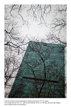Looking up from Bryant Park, New York City. $39.00