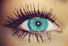 Eyelash envy!