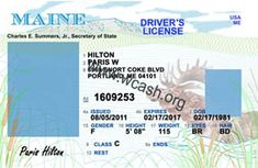 Template Maine drivers license editable photoshop file .psd