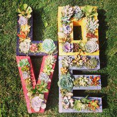 Monogrammed Letter Succulent Planter by SucculentWonderland, $46.00