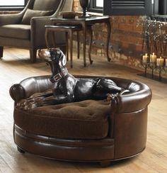 Lucky Dog Pet Bed - treasurecombers