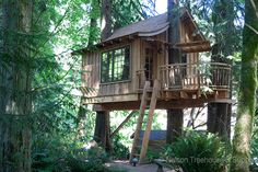 tree house master pete nelson | Nelson Treehouse and Supply: Portfolio of residential treehouses ...