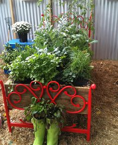 "Upcycled Vegetable Garden ""Bed"" - a creative reuse of bed heads for a fun garden look & even a bedside table reused as a plant stand. Teamed with gumboot planters, this garden has plenty of character. See more creative container garden ideas @ http://themicrogardener.com/clever-plant-container-ideas/ 